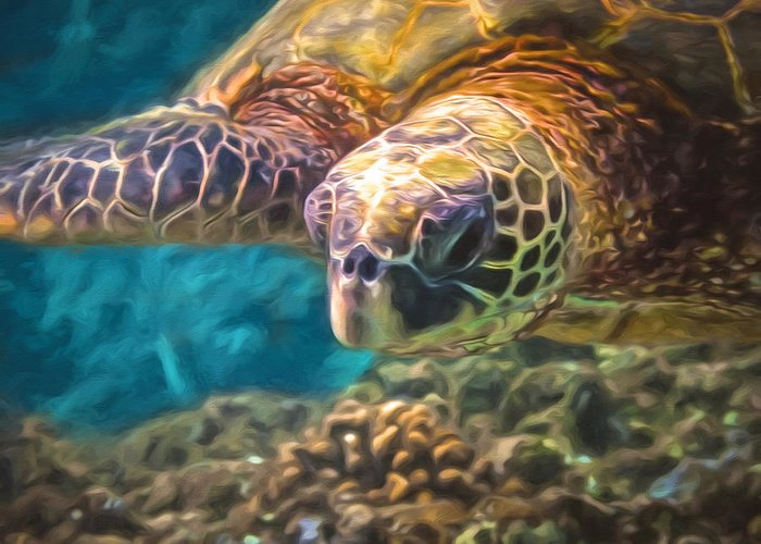 Sea Turtle Greeting Card featuring the photograph Aloha Honu by Susan Rissi Tregoning