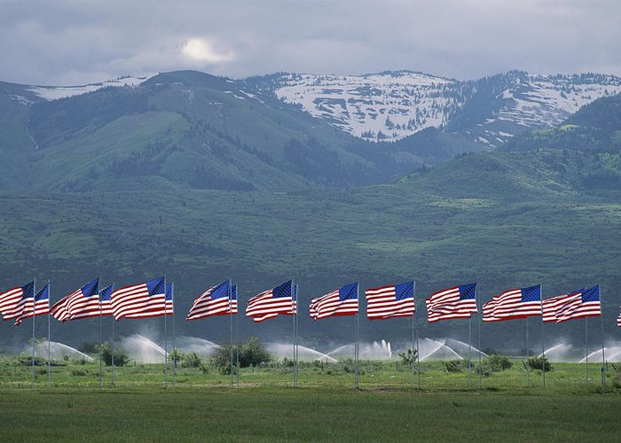 Day Greeting Card featuring the photograph American Flags Honoring Veterans by James P. Blair