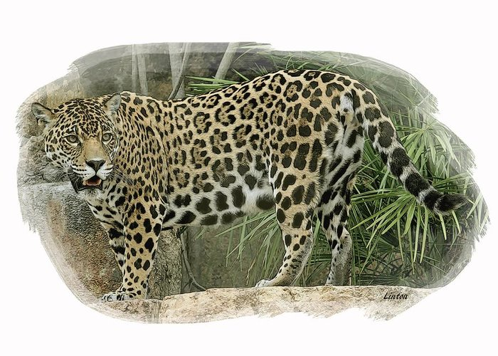 American Jaguar Greeting Card featuring the digital art American Jaguar 18 by Larry Linton
