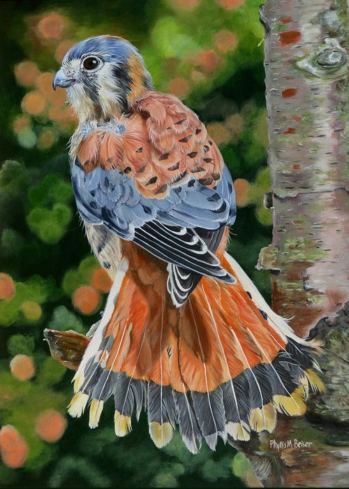 Bird Greeting Card featuring the painting American Kestrel In My Garden by Phyllis Beiser