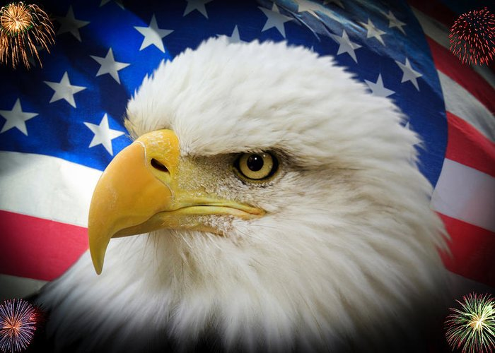 4th Of July Greeting Card featuring the photograph American Pride by Shane Bechler
