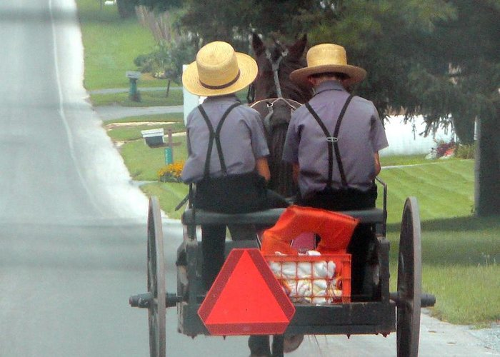 Amish Greeting Card featuring the photograph Amish Boys On A Ride by Lori Seaman
