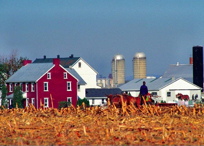 Amish Farmland Greeting Card featuring the photograph Amish Farm by Thomas R Fletcher