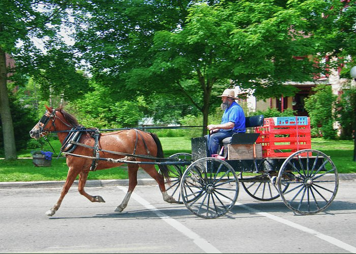 Amish Greeting Card featuring the photograph Amish Merchant 5671 by Guy Whiteley
