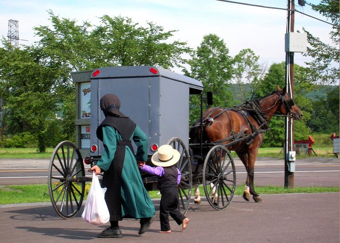 Amish Greeting Card featuring the photograph Amish Mother And Son by George Jones