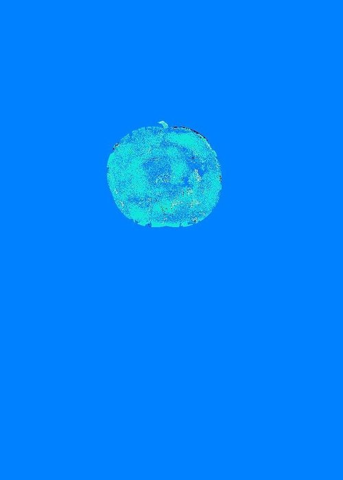 Abstract Greeting Card featuring the digital art An apple in blue by Joseph Ferguson