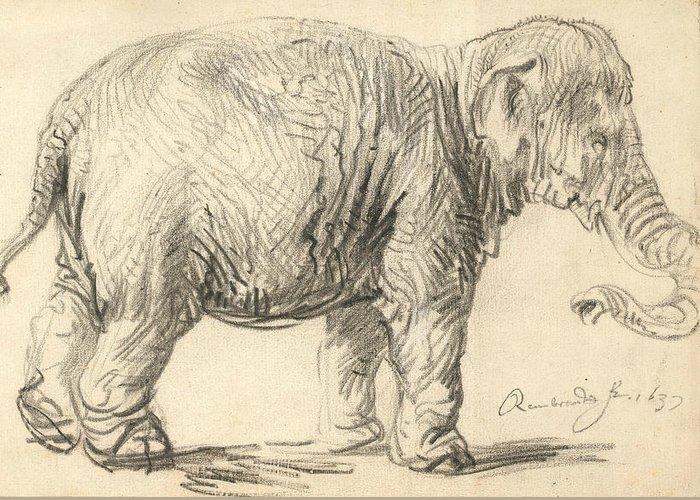 An Elephant Greeting Cards