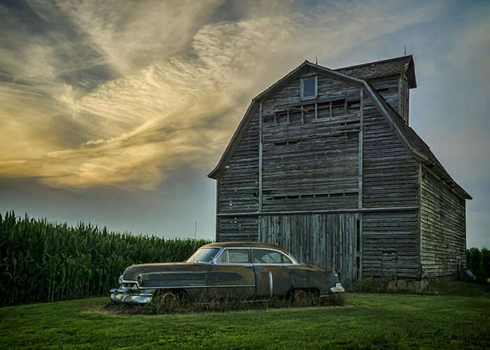 Cadillac Greeting Card featuring the photograph An Old Cadillac By A Barn And Cornfield by Sven Brogren