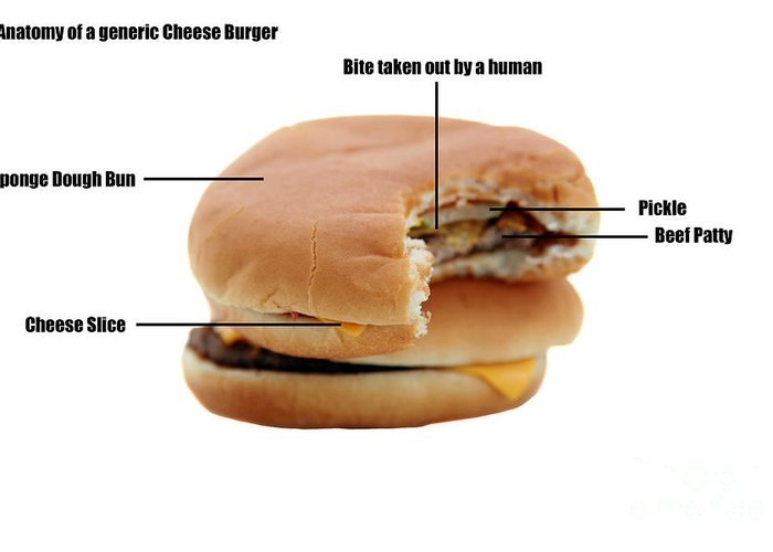 Addictive Greeting Card featuring the photograph Anatomy Of A Generic Cheese Burger by Michael Ledray