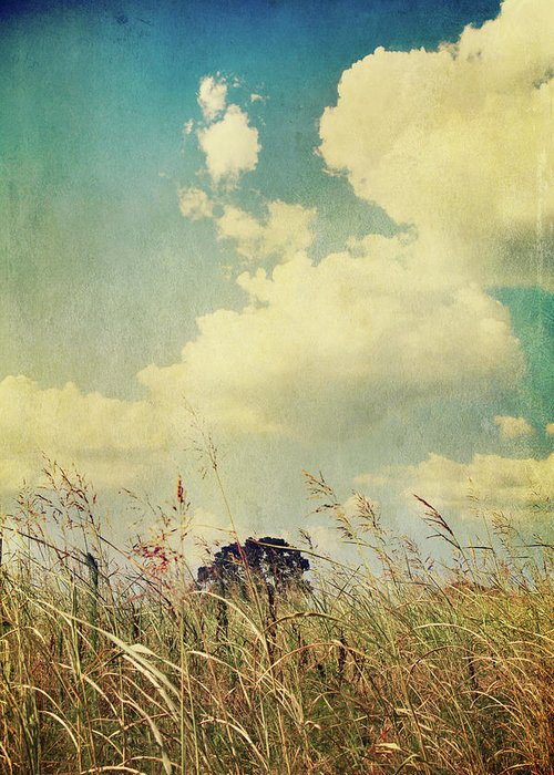 Clouds Greeting Card featuring the photograph And The Livin's Easy by Laurie Search