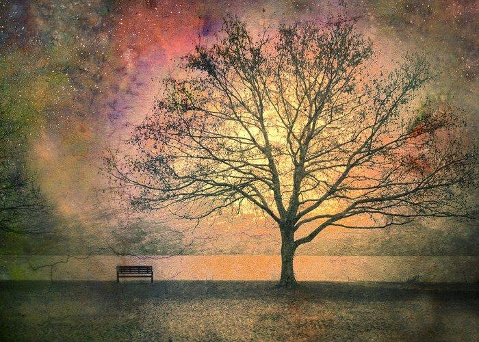 Fantasy Tree Photographs Greeting Cards