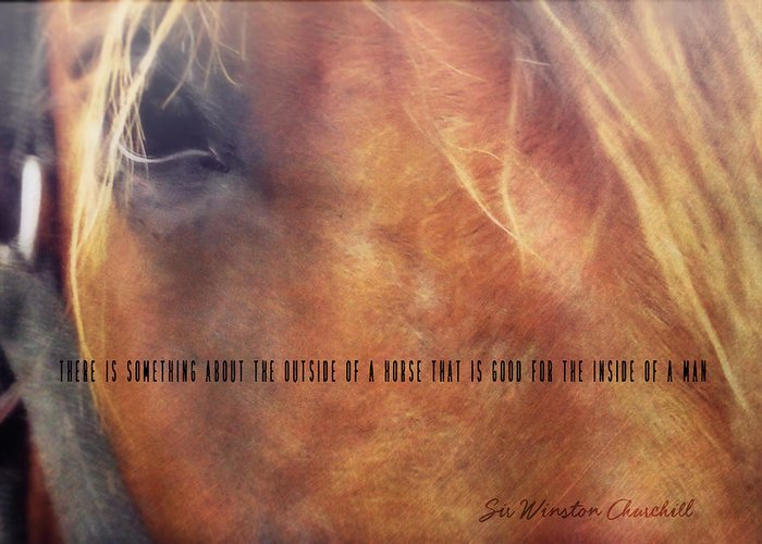 Horse Greeting Card featuring the photograph Andalusian Eye Quote by JAMART Photography
