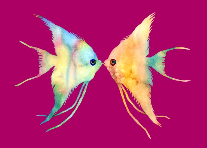 Angelfish Greeting Cards