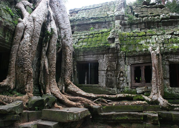 \angkor Wat\ Cambodia \siem Reap\ Historical Ancient Kymer Tree Roots Moss Greeting Card featuring the photograph Angkor Wat by Linda Russell
