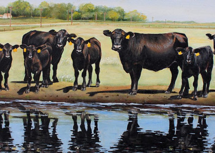 Angus Greeting Card featuring the painting Angus Reflections by Toni Grote