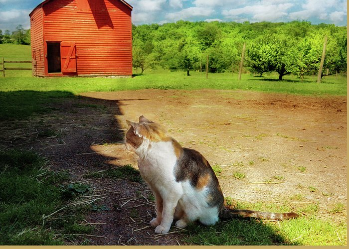 Savad Greeting Card featuring the photograph Animal - Cat - The Mouser by Mike Savad