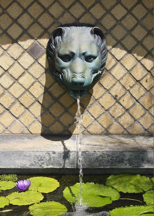 J Paul Getty Greeting Card featuring the photograph Animal Fountain Head by Teresa Mucha