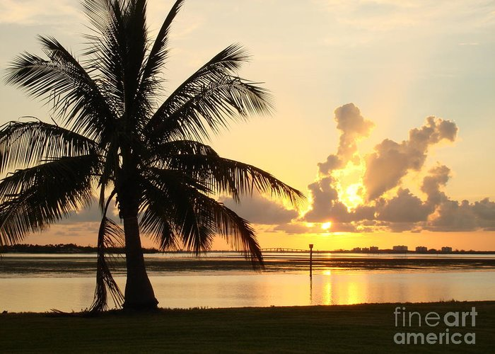 Sunset Greeting Card featuring the photograph Another Day In Paridise by Robyn Leakey