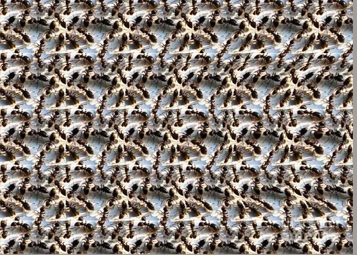 Ant Hill Stereogram Greeting Card