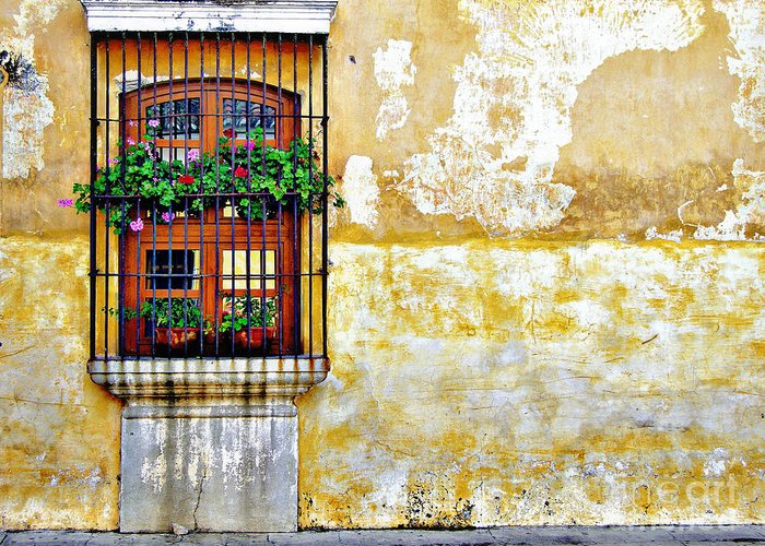 Window Greeting Card featuring the photograph Antigua Window by Derek Selander