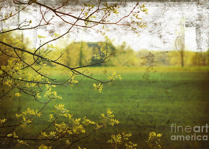Abstract Greeting Card featuring the digital art Antiqued Grunge Landscape by Sandra Cunningham