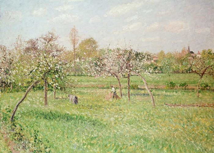 Apple Greeting Card featuring the painting Apple Trees At Gragny by Camille Pissarro
