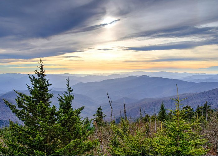 Autumn. Clingmans Dome Greeting Card featuring the photograph Apricot Afternoon at Clingmans Dome by Kristina Plaas