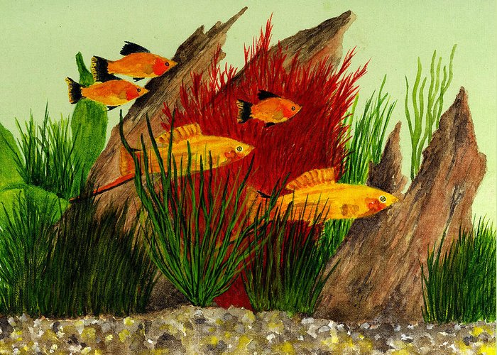 Fish Greeting Card featuring the painting Aquarium Fish by Michael Vigliotti