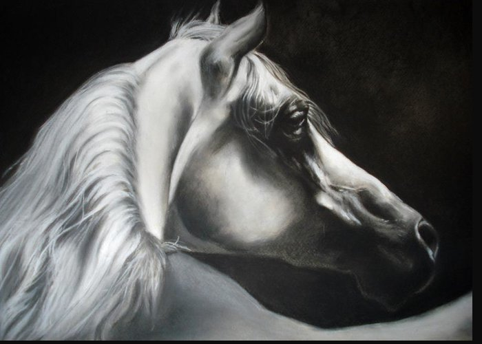 Horse Greeting Card featuring the pastel arabian horse IX by Desimir Rodic