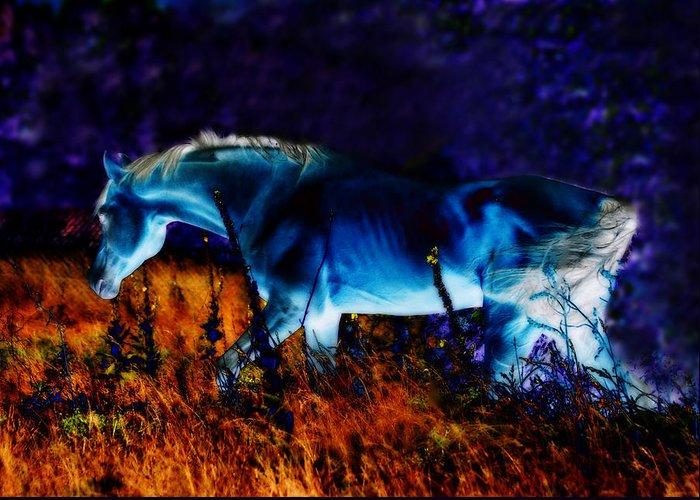 Digital Art Greeting Card featuring the photograph Arabian Stallion by ELA-EquusArt