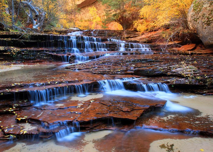 Zion Greeting Card featuring the photograph Archangel Falls In Zion National Park by Pierre Leclerc Photography