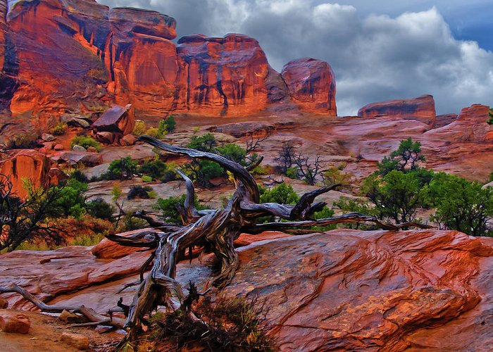 Arches Greeting Card featuring the photograph Arches National Park Rain by Kenneth Eis