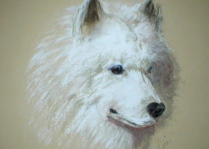 Dog Greeting Card featuring the drawing Arctic Serenity by Cori Solomon