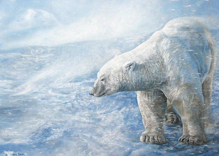 Polar Bear Lone Male Greeting Cards