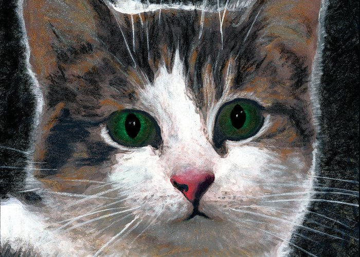 American Shorthair Greeting Card featuring the drawing Are You Talking To Me by Brent Ander