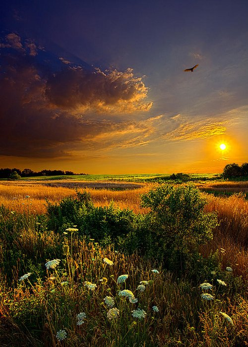 Horizons Greeting Card featuring the photograph Aridity by Phil Koch