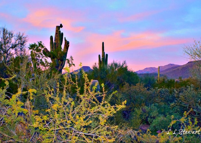 Southwest Greeting Card featuring the photograph Arizona Desert by L L Stewart