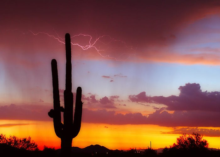 Arizona Greeting Card featuring the photograph Arizona Lightning Sunset by James BO Insogna