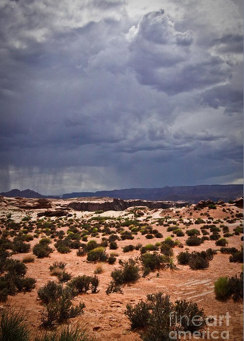 ryankellyphotography@gmail.com Greeting Card featuring the photograph Arizona Rainy Desert Landscape by Ryan Kelly