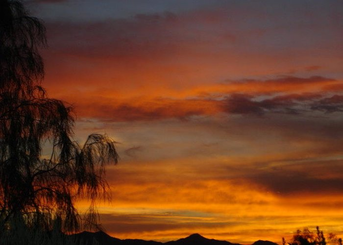 Photography Greeting Card featuring the photograph Arizona Sunset by Lessandra Grimley
