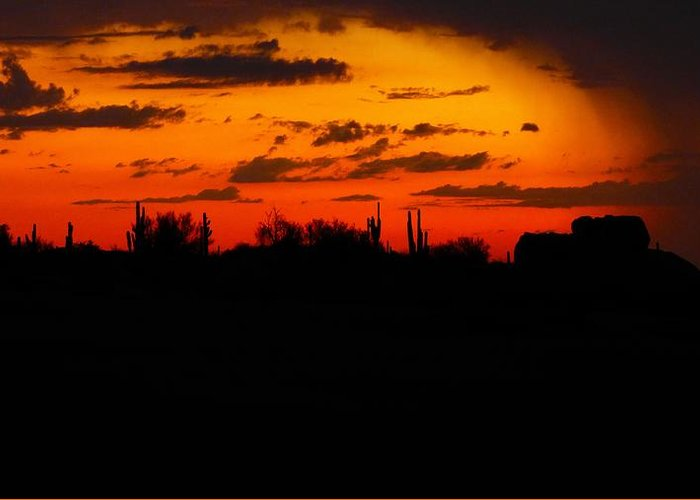 Nature Greeting Card featuring the photograph Arizona Sunset by Lisa Spero