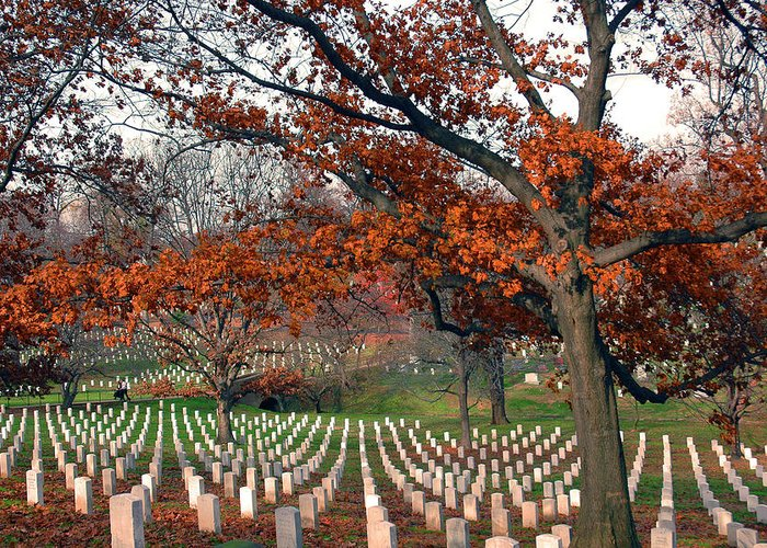 Veteran Greeting Card featuring the photograph Arlington Cemetery In Fall by Carolyn Marshall