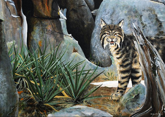 Bobcat Animals Painting Rocks Yucca Acrylic Greeting Card featuring the painting Around The Corner by Michael Blanco