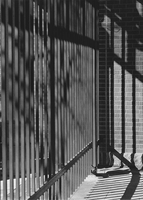Light And Shadow Greeting Card featuring the photograph Art And Design Center Security Gate by Jim Furrer