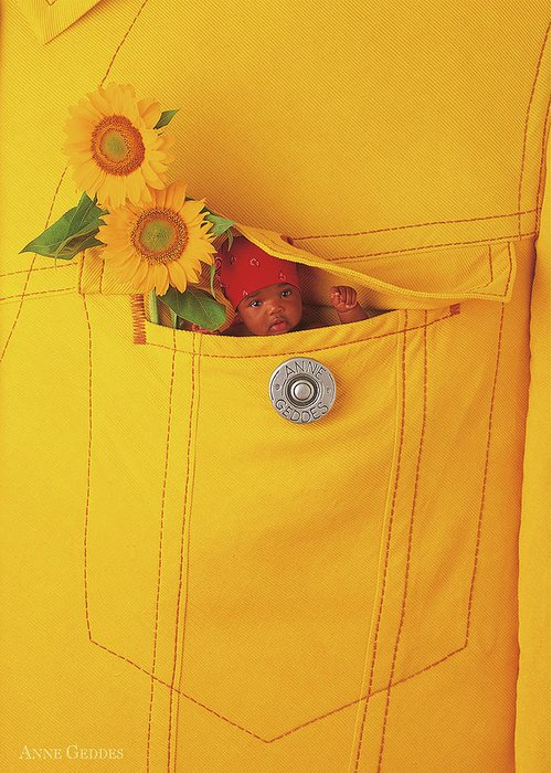 Sunflowers Greeting Card featuring the photograph Small Change by Anne Geddes