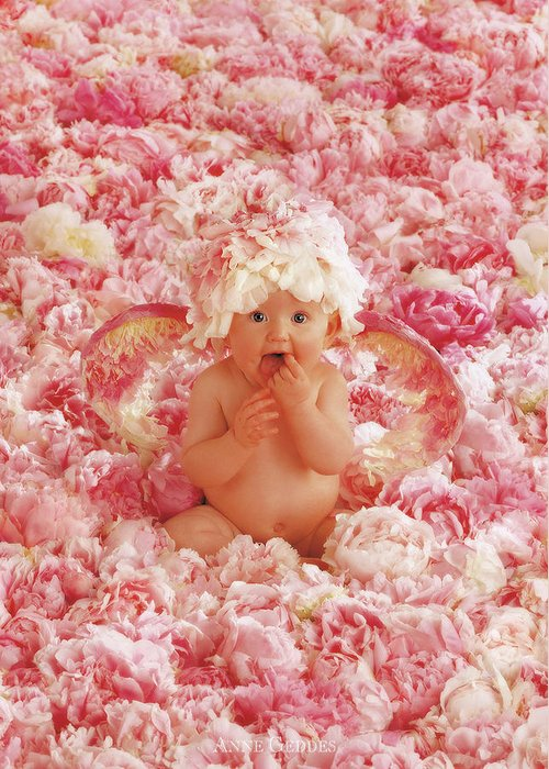 Angel Greeting Card featuring the photograph Peony Angel by Anne Geddes