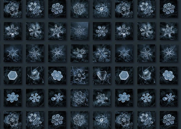 Snowflake Greeting Card featuring the photograph Snowflake Collage - Season 2013 Dark Crystals by Alexey Kljatov
