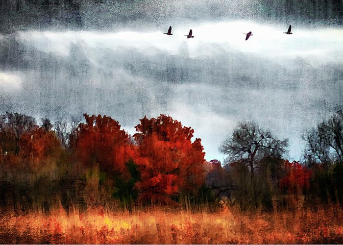 Fall Greeting Card featuring the photograph Art Series #1 by Garett Gabriel