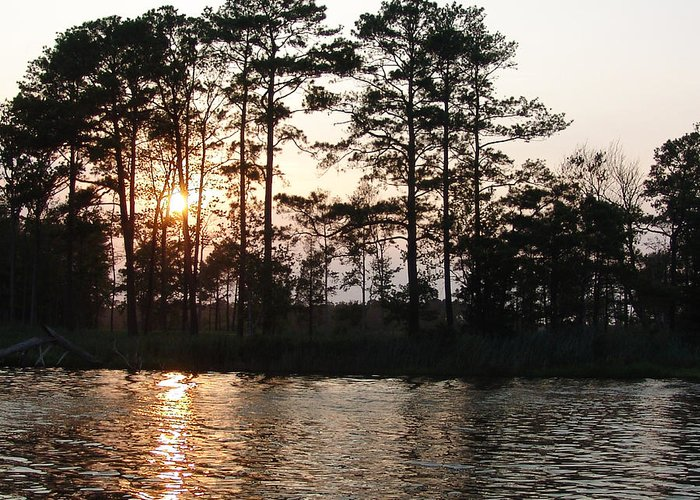 Bay Greeting Card featuring the photograph Assawoman Sunset by Kevin Callahan