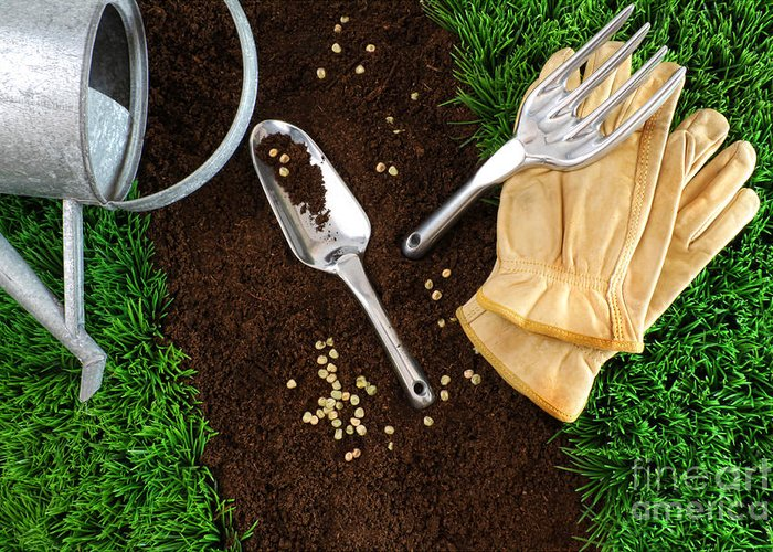 Background Greeting Card featuring the photograph Assortment Of Garden Tools On Earth by Sandra Cunningham